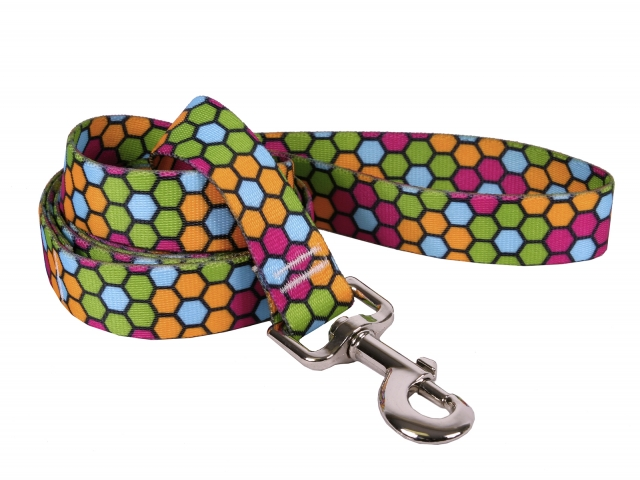 Honeycomb Leash